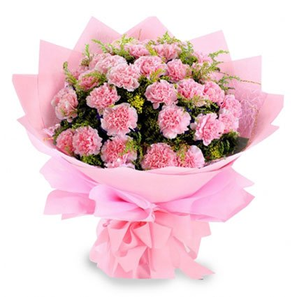 Bouquet of Pink Carnations