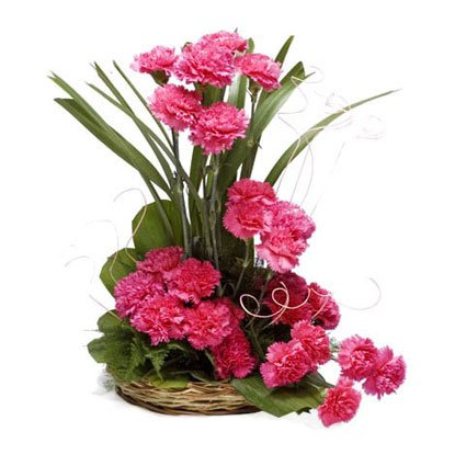 Carnation Arrangements