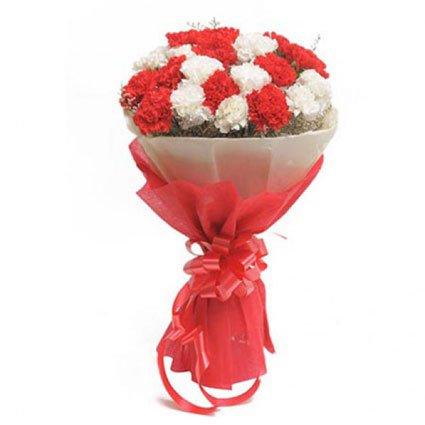 Carnation Hand Bouquet