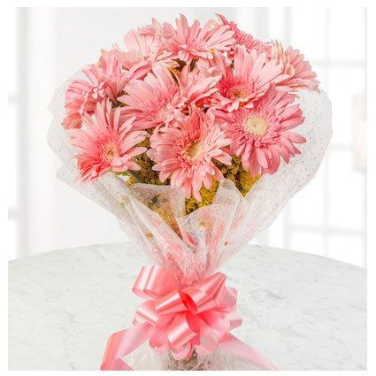 Gerbera Hand Bouquet