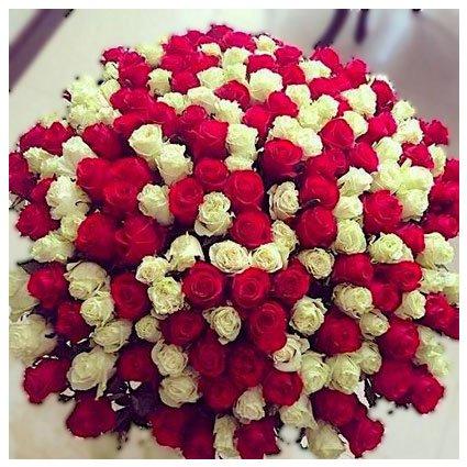 200 Roses Bouquet