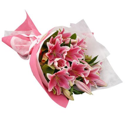 Hot Pink Lilies