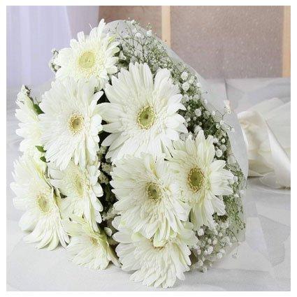 White Gerbera Bouquet